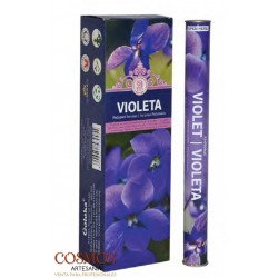 **Caja Varas Violeta Goloka...