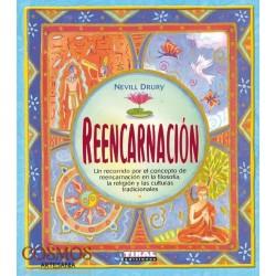 **Libro Reencarnación (PVP...