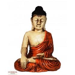 **Buda meditando capa...