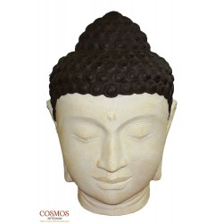 **Cabeza de Buda de...
