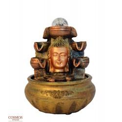 **Fuente Busto Buda...