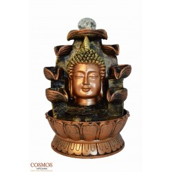 **Fuente Busta Buda Thai...