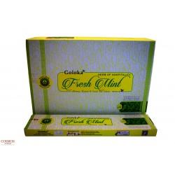 **Caja Varas Fresh Mint...