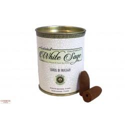 **Conos Reflujo White Sage...